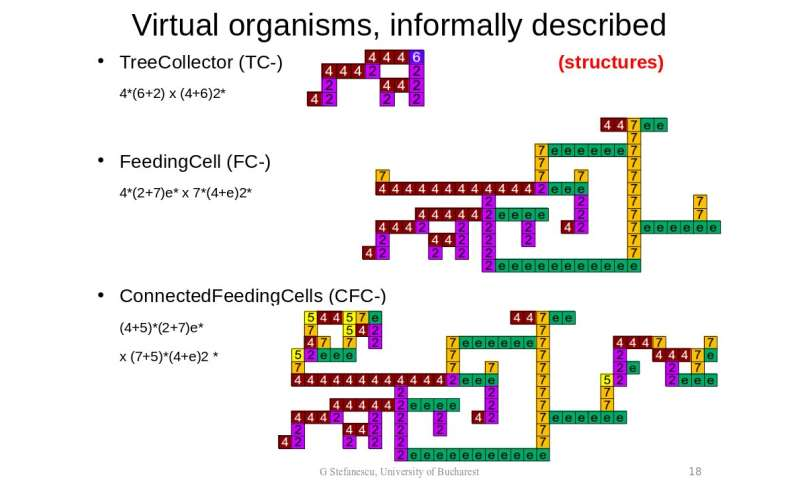 **A new model introduces the concept of adaptive virtual organisms (VOs)