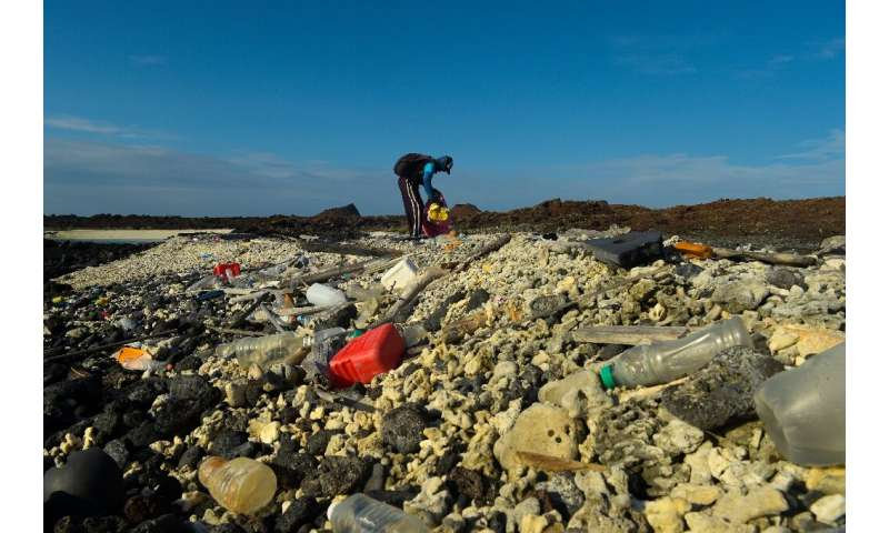 A volunteer collects plastic waste on remote Isabela Island in the Galapagos archipelago in February 2019