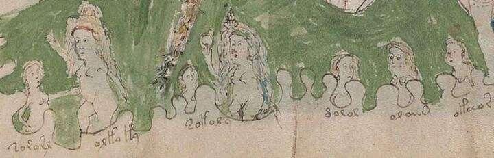 Bristol academic cracks Voynich code, solving century-old mystery of medieval text
