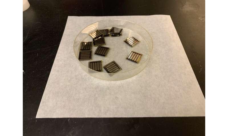 Caffeine gives solar cells an energy boost