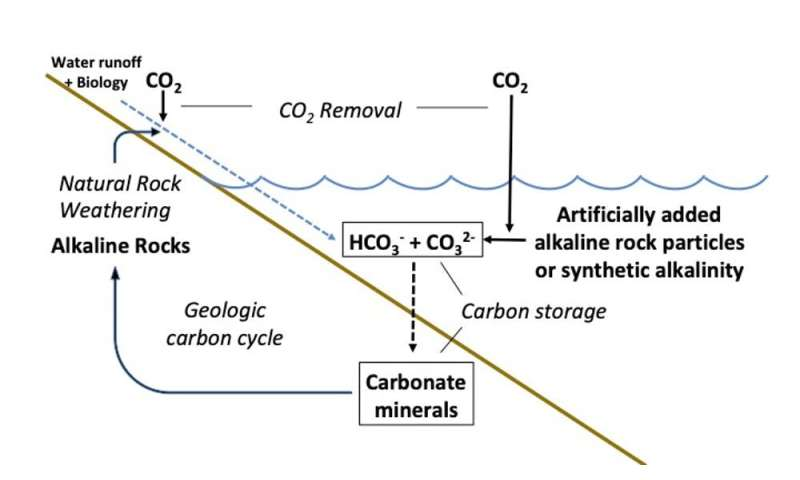 Can we tweak marine chemistry to help stave off climate change?