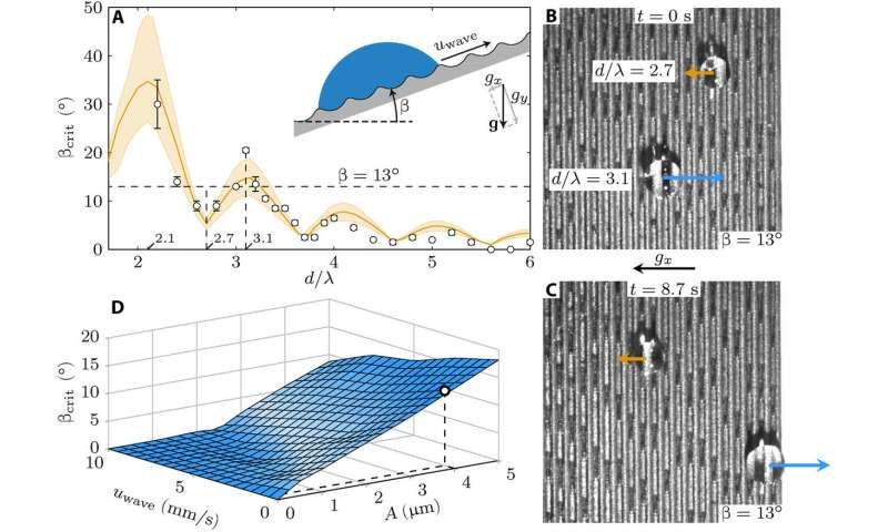 Climbing droplets driven by mechanowetting on transverse waves
