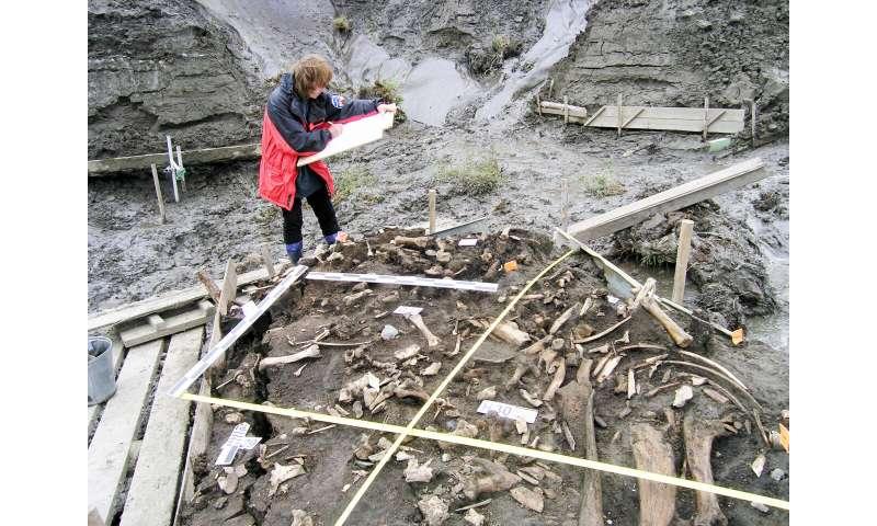 ÐÐÐ Ð¾Ñ 31 000-годиÑни млеÑни зÑби води до оÑкÑиванеÑо на нова гÑÑпа Ð¾Ñ Ð´Ñевни ÑибиÑÑÑи