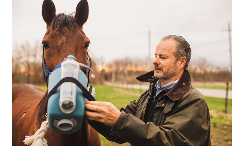 Expert explains how breathing problems can quash a racehorse's chance at gold