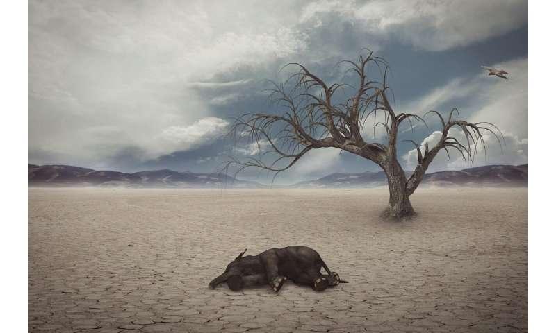 Here we go again: Earth's major 'mass extinctions'