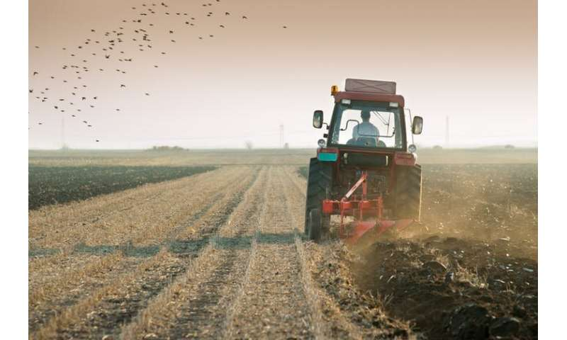 Farmers have Britain's most lethal job –here's how to make them safer