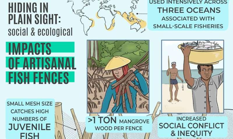 Cercas de peces a través de los mares tropicales que tienen efectos devastadores a gran escala