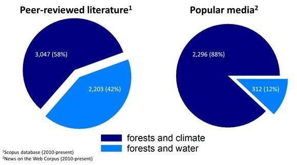 Global analysis of streamflow response to forest management
