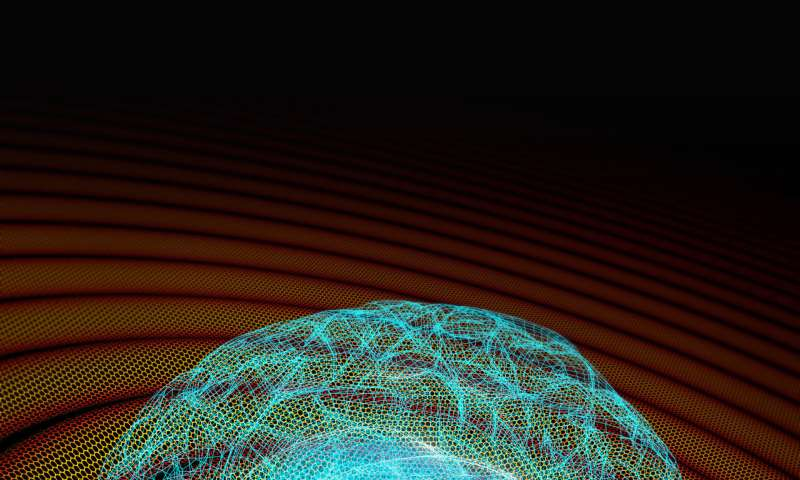 Graphene-based implant overcomes technical limitation to record brain activity at extremely low frequencies