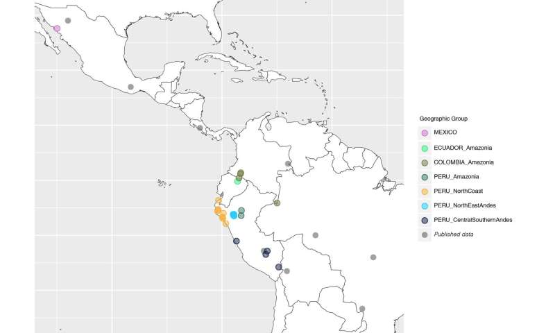 Human genetic diversity of South America reveals complex history of