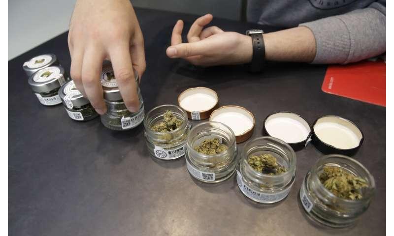 Italy's 'cannabis light' creates buzz even if the pot won't