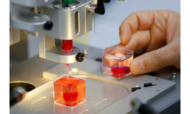 Journalists were shown a 3D print of a heart about the size of a cherry, immersed in liquid, at Tel Aviv University