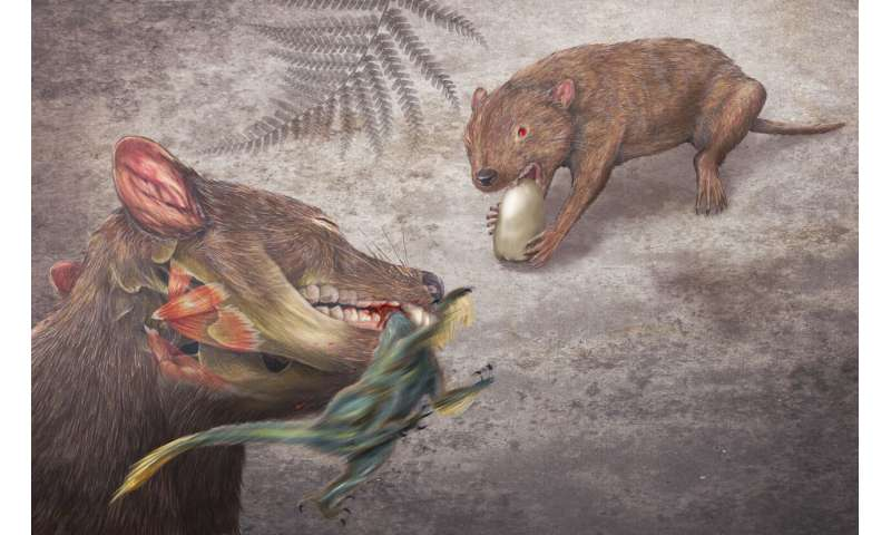 Mammals and their relatives thrived, diversified during so-called 'Age of Dinosaurs'