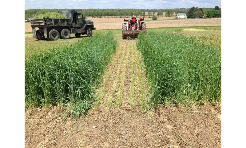 Manure application changes with winter crop can cut nitrogen loss, boost profits