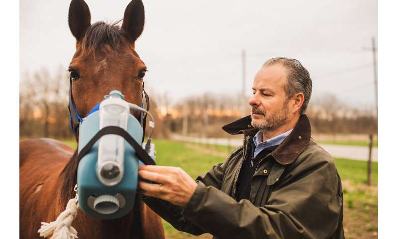 Mild equine asthma can distinguish winners from losers on the racetrack
