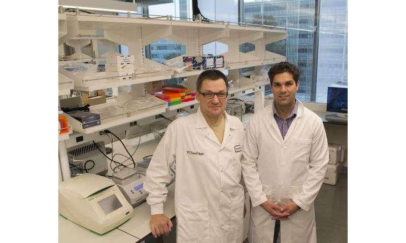 Nueva tecnología basada en CRISPR desarrollada para controlar plagas con genética guiada con precisión