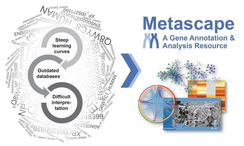 New Metascape platform enables biologists to unlock big-data insights