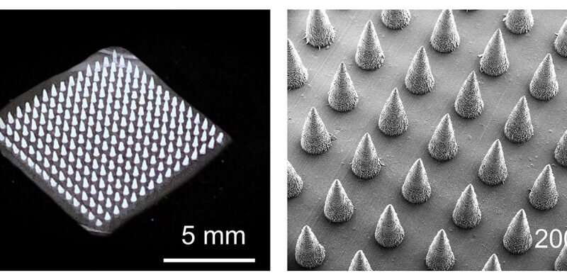 New microneedle technique speeds plant disease detection