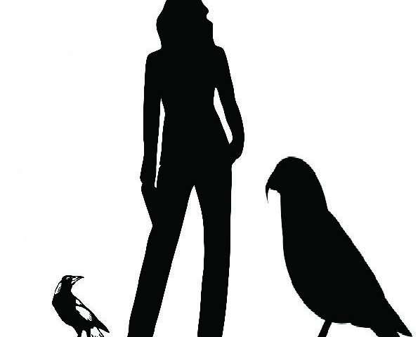 NZ big bird a whopping 'squawkzilla'
