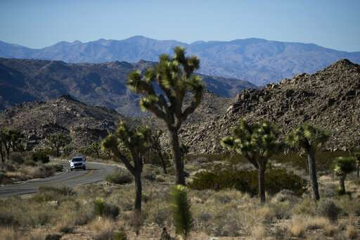 Parks rush to clean up toppled trees, trash after shutdown