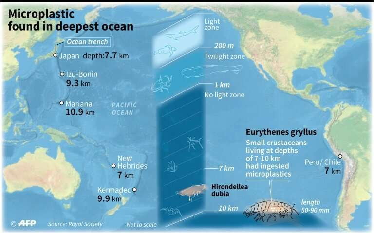 Plastic pollution found in the deepest ocean