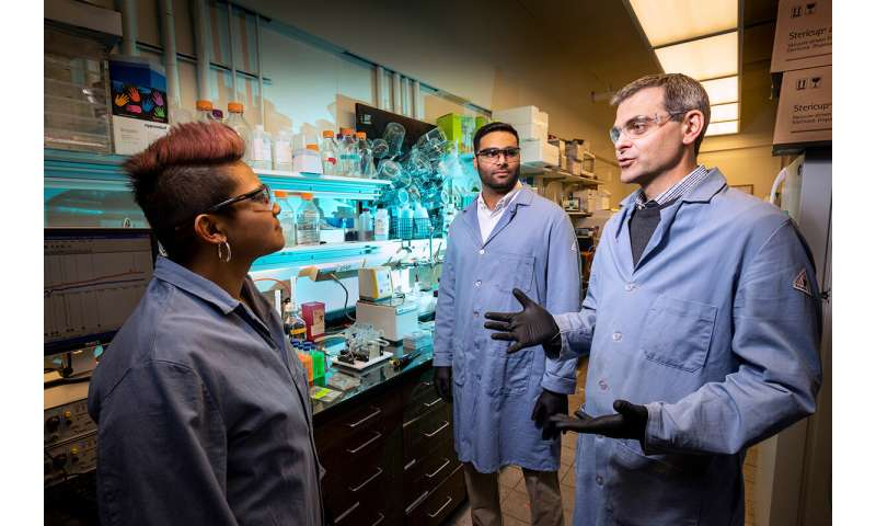 Potential cystic fibrosis treatment uses 'molecular prosthetic' for missing lung protein