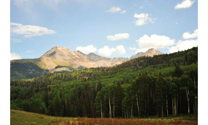 Predicting how forests in the western US will respond to changing climate
