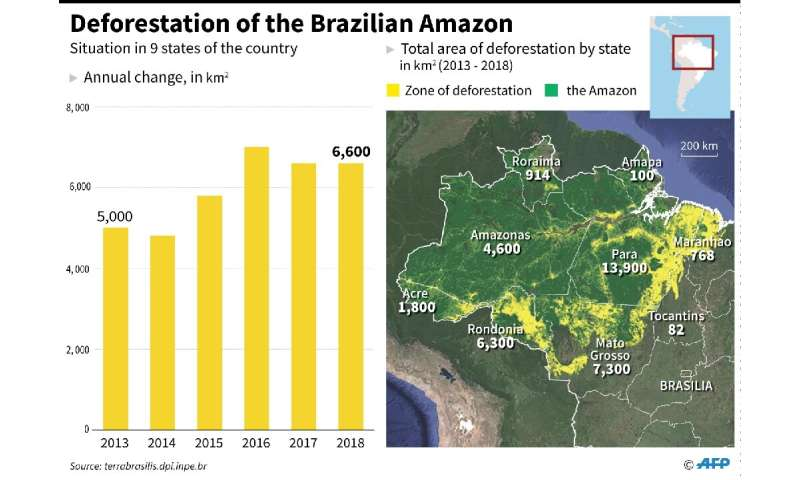 Progression of deforestation in the Brazilian Amazon, with total area by state