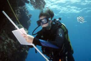 Researcher investigates threats to coral and other ocean life