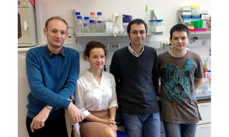 Russian scientists alter 3D genome using 'small molecules'