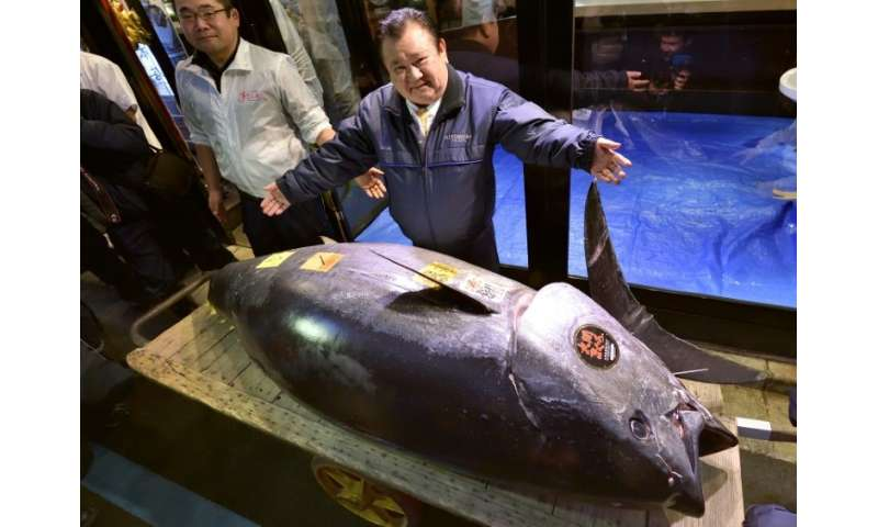 Self-styled 'tuna king' Kiyoshi Kimura shows off his catch