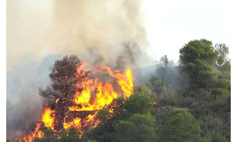 Spanish firefighters were struggling to contain a blaze that broke out in its northeastern Catalonia region