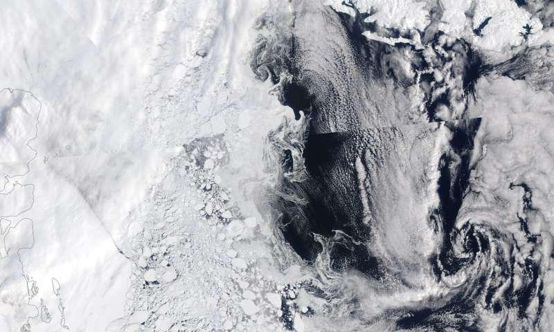 Study shows algae thrive under Greenland sea ice