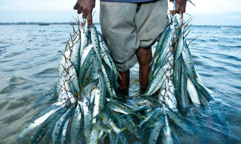 The blue economy – ocean of opportunity or sea of troubles?