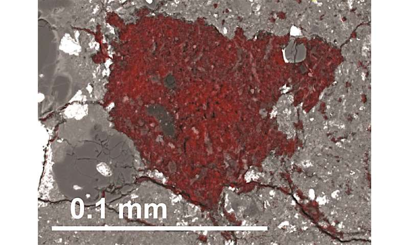 Tiny fragment of a comet found inside a meteorite