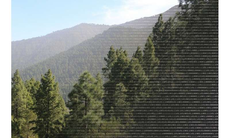 What 'Big Data' reveals about the diversity of species