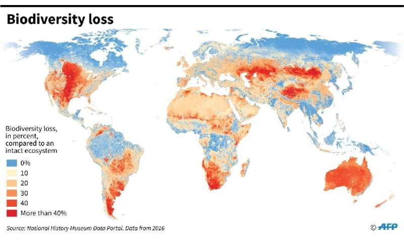 World map showing biodiversity loss by region compared to an intact ecosystem