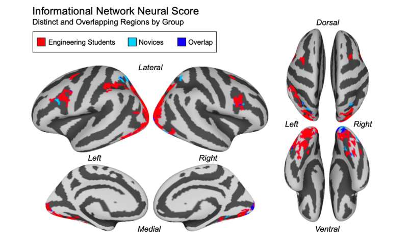 Your brain activity can be used to measure how well you understand a concept