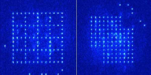 Researchers break record for atoms positioned individually in a trap to create defect-free arrays
