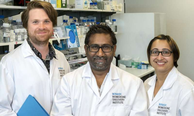 Studies have revealed the factors behind embryonic stem cell status.