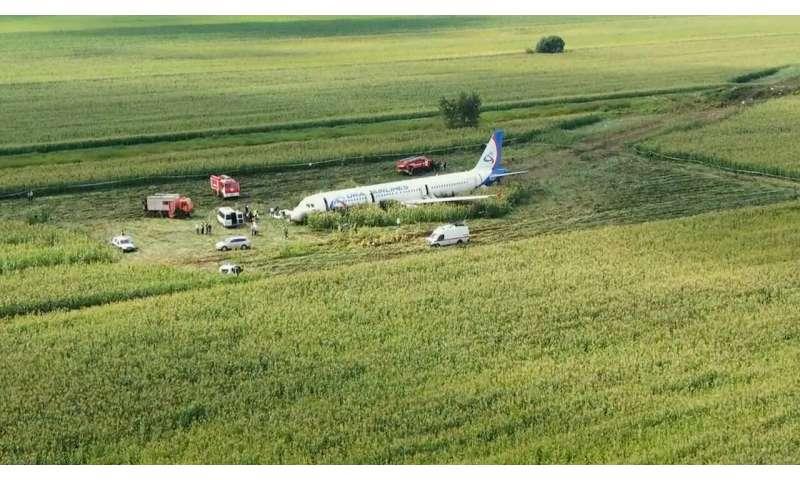 Russian pilot safely lands jetliner disabled by bird strike