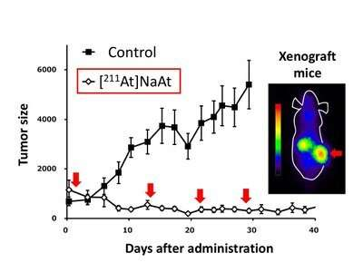 Breakthrough alpha-ray treatment of cancer without external radiation