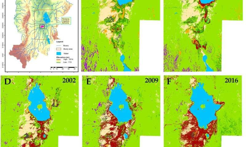 Scientists recommend measures to contain rapid woody weed spread in Baringo County, Kenya