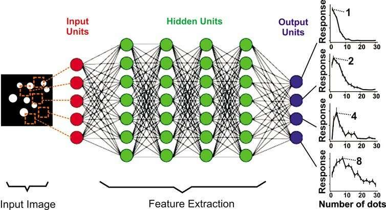 AI develops human-like number sense – taking us a step closer to building machines with general intelligence