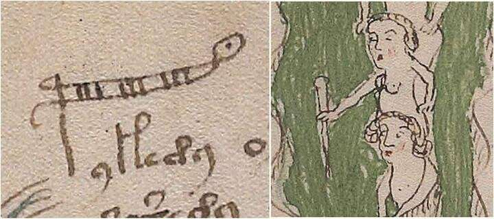 Bristol academic cracks Voynich code, solving century-old mystery of medieval text