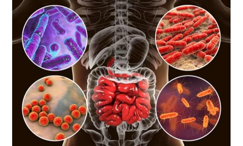 Aumento del cancro del colon-retto in giovani adulti: quale potrebbe essere la causa?