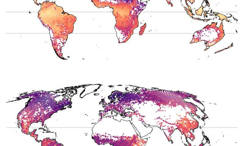 Complete world map of tree diversity