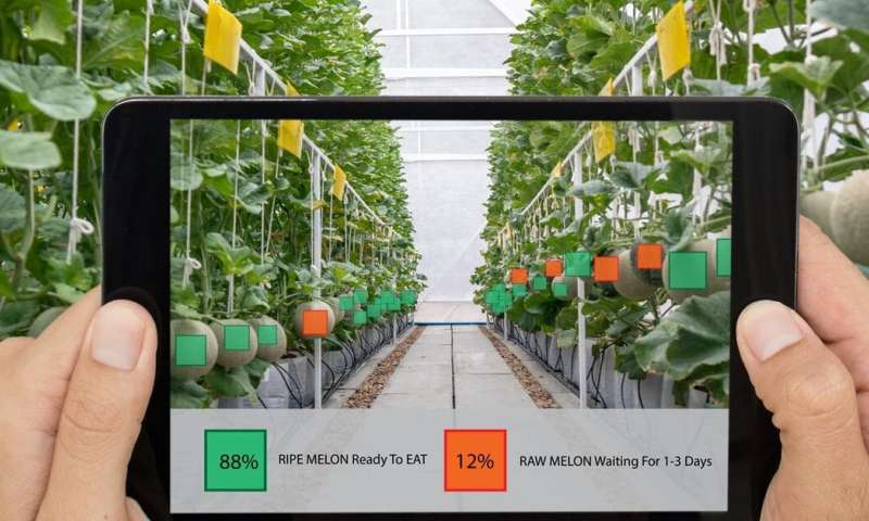 Forget smart cities (for a minute), we need to talk about smart farms