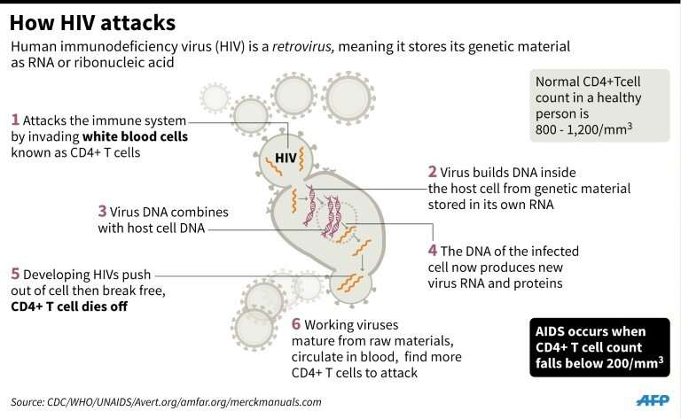 How HIV attacks