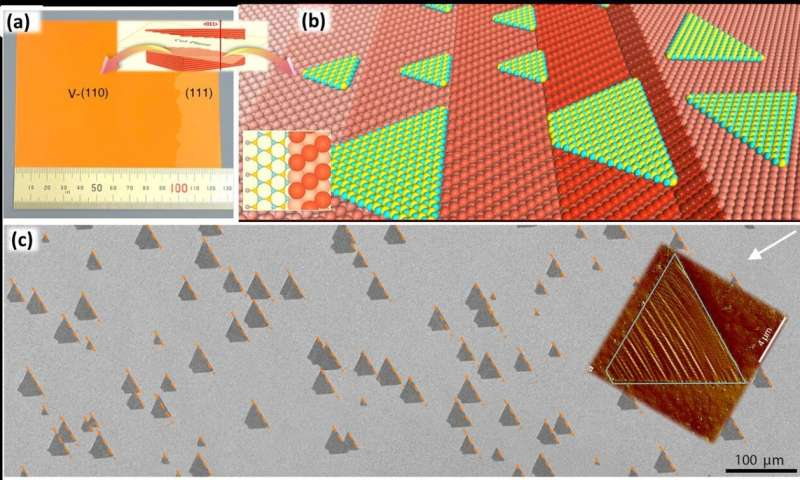 How to enlarge 2D materials as single crystals?